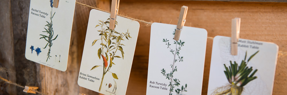 Creative Place Cards